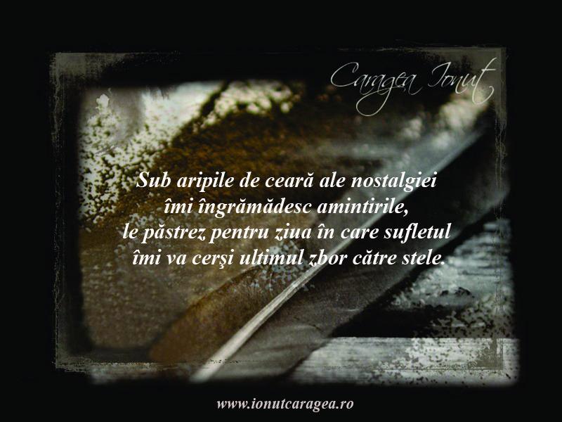 Citate Cu Fotografi : Imagini cu citate şi aforisme de ionuţ caragea